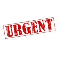 Urgent Action to Prevent War in Ukraine!